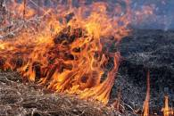 Пожароопасно: На Прикарпатье спасатели п…