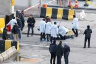 Відео дня: Розстріл поліцейських у Туреччині, олень на дорогах Києва