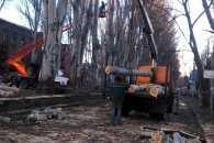 """У Філатова пояснили причину обрізки комунальниками дерев """"під пеньок"""""""