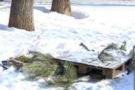 Миколаївські комунальники відхрещуються від люка, в який впала 11-річна дівчинка