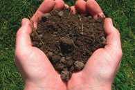 На Кропивниччині чоловік присвоїв собі майже 50 га державної землі
