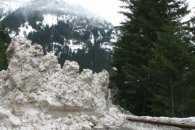 На Закарпатті на трасу зійшли чотири снігові лавини
