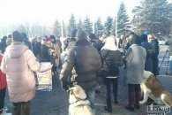 У Кривому Розі вимагають покарання за виготовлення корму з собак