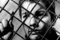 На Сумщині банда підлітків тероризувала держпрацівників