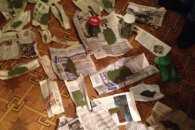"""22-річний мешканець Сумщини назбирав на пустирях """"травки"""" на 110 тис. грн"""