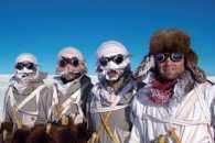 На Росії полярникам заборонили гей-паради - заради песців