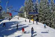 Закарпаття: прогноз погоди на 22 січня - мороз дужчає