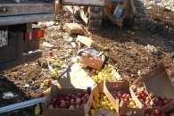 """На Кубані за """"санкційними"""" овочами та фруктами полювала ФСБ"""