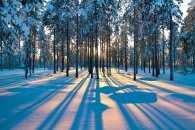 На Тетянин день у похмурому Хмельницькому очікують дрібний сніг