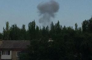 чорний гриб Донецьк