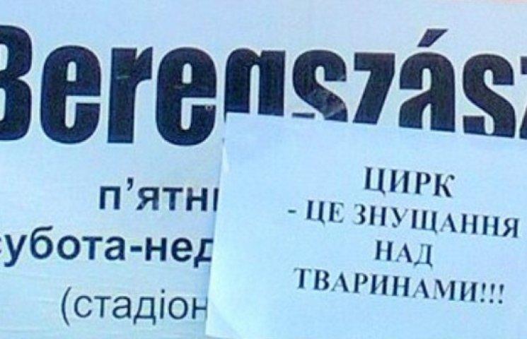 Шоу не буде: закарпатці протестують проти угорського цирку (ФОТОФАКТ)