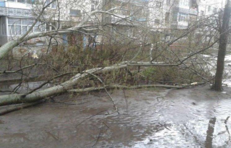 """Сумське """"Післязавтра"""": комунальники підраховують збитки від урагану (ФОТОФАКТ)"""
