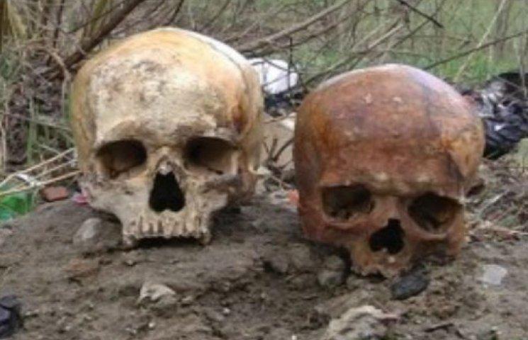 """У Сумах невідомі """"прикрасили"""" ворота автокооперативу людськими черепами (ФОТО + ВИДЕО)"""