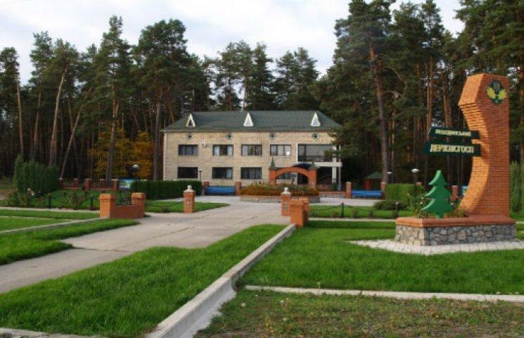 Лісничі Сумщини перепрацювали аж на 11%