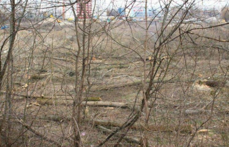 Саджають гучно – пиляють тихо: Мерія Сум піариться на суботниках, але приховує незаконні знищення дерев