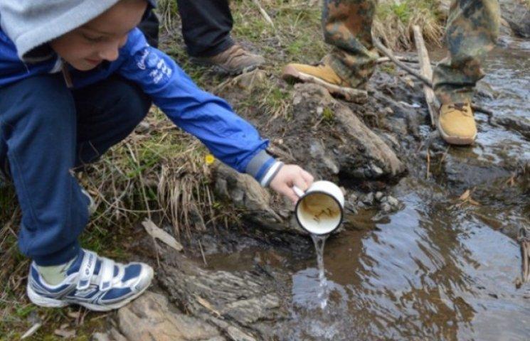 На Закарпатті десятки тисяч мальків форелі обживаються у гірських потоках (ФОТО, ВІДЕО)