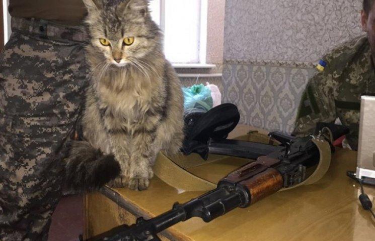 У дніпропетровських бійців у Пісках з`явився пухнастий янгол-охоронець (ФОТО)