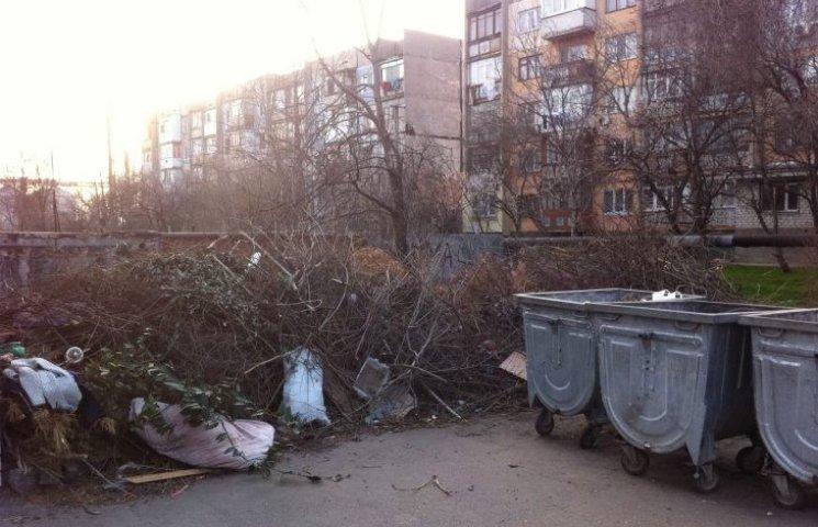Миколаївець показав, як комунальники перетворили двір на сміттєзвалище