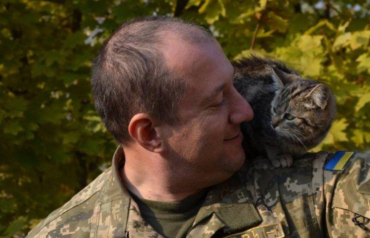 За что котам в АТО надо поставить памятник-4