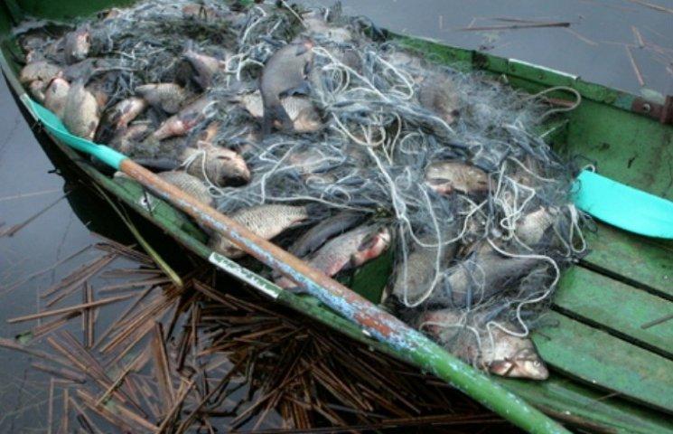 На Миколаївщині в районі військового порту затримали браконьєрів