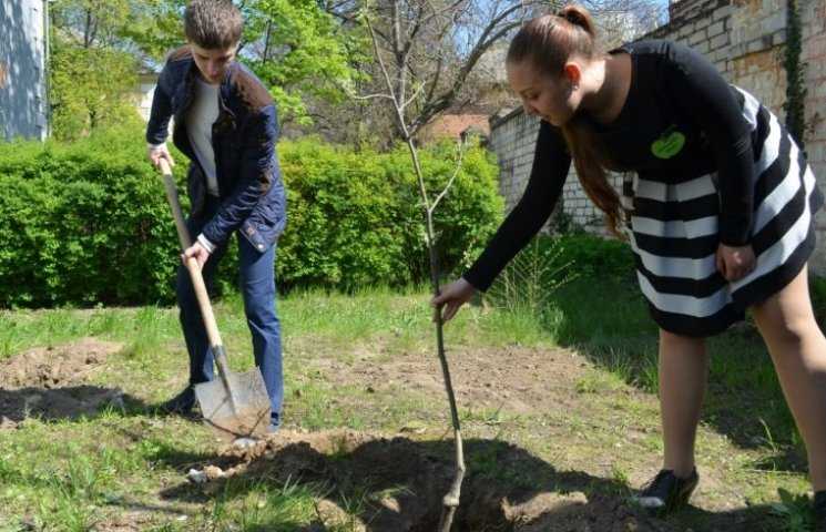 Миколаївський академічний коледж приєднався до Міжнародної екоакції
