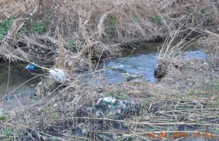 Миколаївці вийдуть розгрібати цілюще джерело у Богоявленському парку