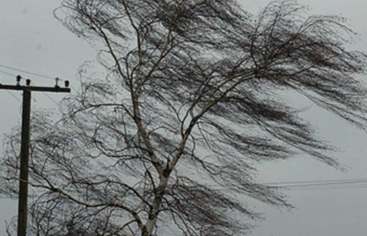 На Вінниччині через негоду знеструмлено майже 30 населених пунктів