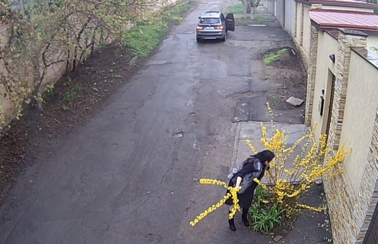Одеситка на BMW X3, яка обірвала кущ з квітами, підірвала інтернет