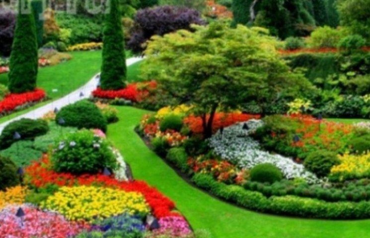 Миколаївці хочуть створити у місті ботанічний сад