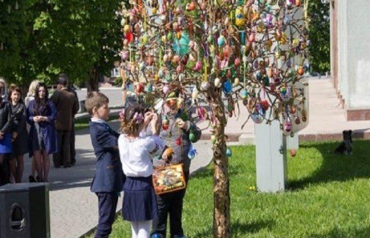 Писанкове дерево зацвіло у Красилові