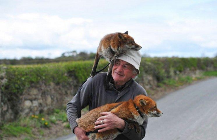 Як чоловік врятував лисиць, а вони сіли йому на голову