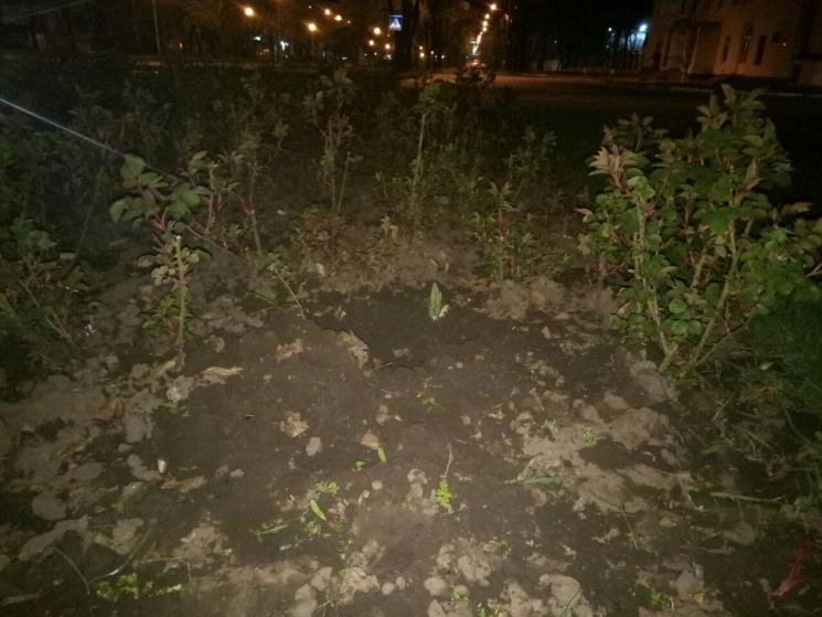 У Запоріжжі чоловік із жінкою викопали к…