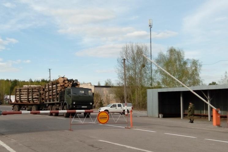 Как из Чернобыльской зоны везут лес…