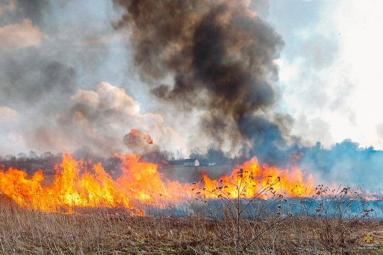 Огненная весна: На Тернопольщине повсеме…