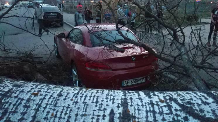 У Вінниці тополя мало не розчавила німецький спорткар (ФОТО)