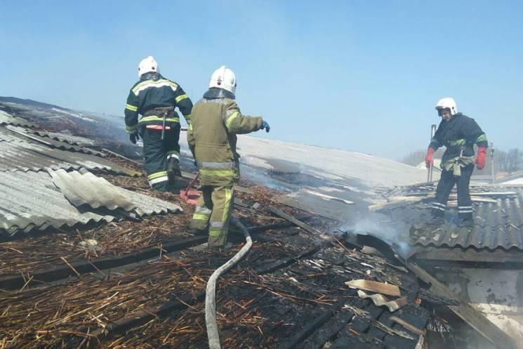 Поблизу Полтави три відділення вогнеборців ліквідовували пожежу в господарчій будівлі (ФОТО)