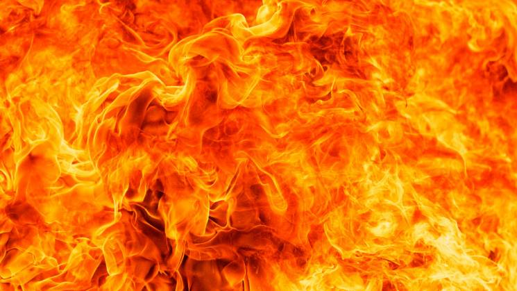 У Краснодарі вогонь охопив парк: Кадри з висоти пташиного польоту (ВІДЕО)