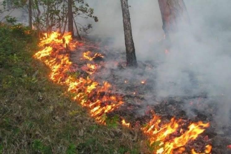 Рятувальники попереджають про кількаденну пожежну небезпеку на Закарпатті