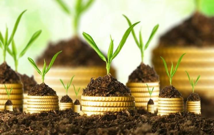"""В інвестиціях Хмельниччини здебільшого """"працюють"""" гроші з Кіпру, Польщі та Росії"""