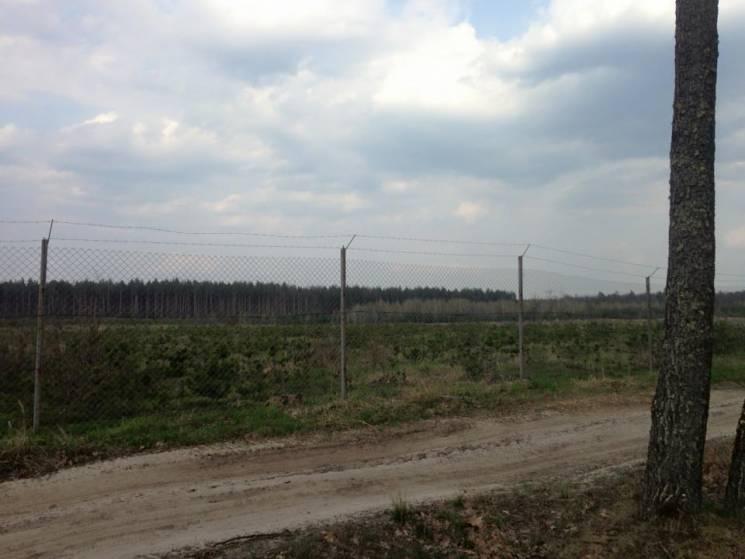 На Київщині гектари лісу закували у паркани (ФОТО)