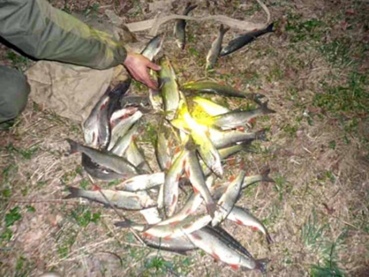 Наполегливий: Прикарпатець руками виловив 40 рибин (ФОТО)