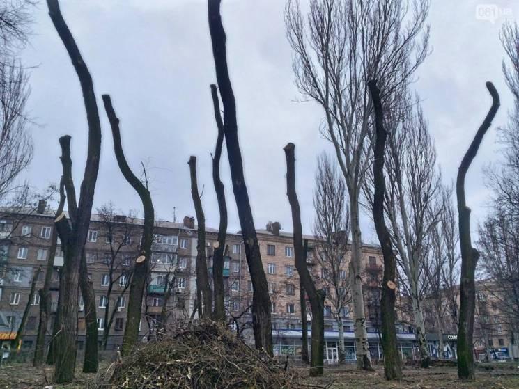 """Запоріжці не дали поставити паркан у сквері, де збираються будувати """"ТРЦ Кальцева"""""""