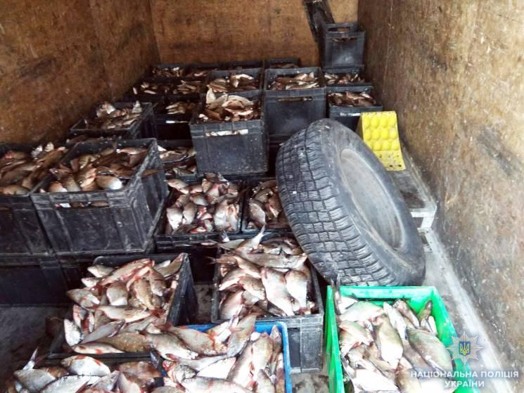 На Кропивниччині у чоловіка вилучили майже тонну браконьєрської риби
