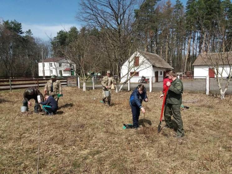 Школярі на Хмельниччині висадили сад (ФОТО)