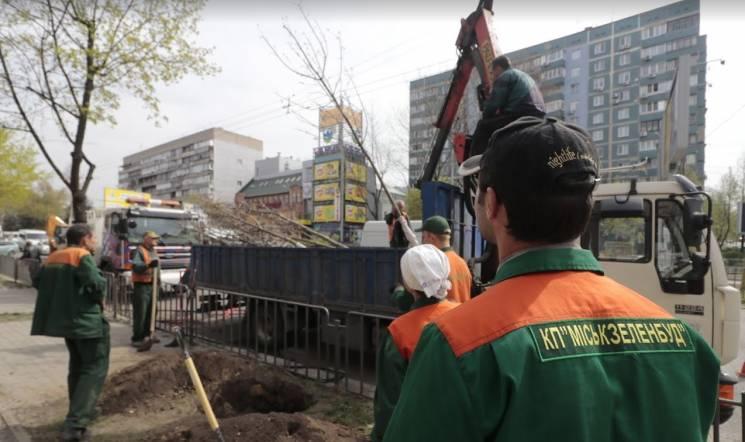 Весняне прибирання Дніпра: Комунальники оновлюють дорожню розмітку,  очищають місто від піску та висаджують дерева
