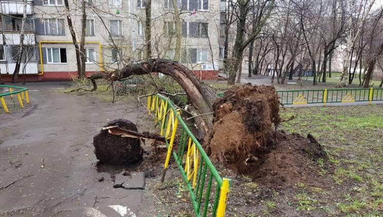 На Москву налетів шалений ураган: багато постраждалих, є загиблі (ФОТО, ВІДЕО)