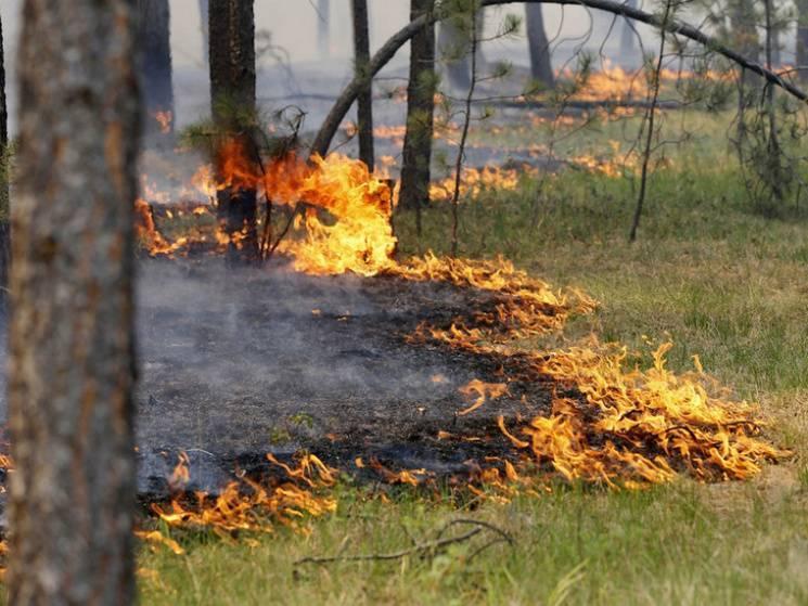На Дніпропетровщині оголосили надзвичайний рівень пожежної небезпеки