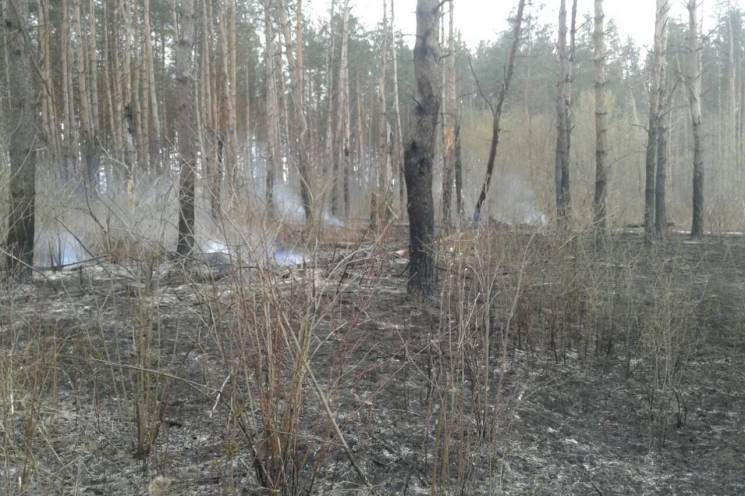 На Харківщині палії знищили понад 3 га м…