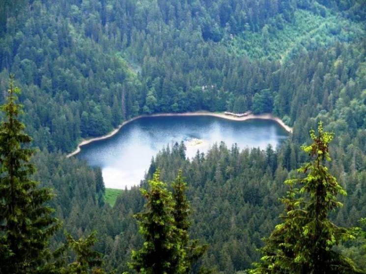 Результат пошуку зображень за запитом озеро синевир