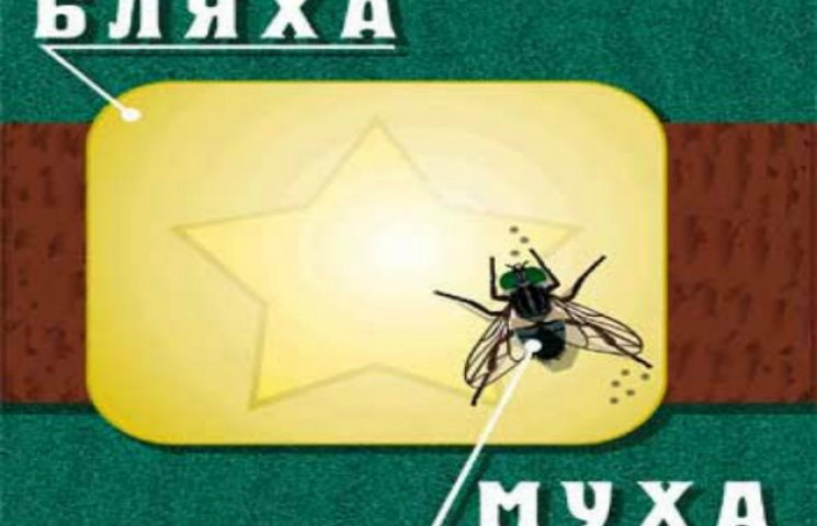 Бляха-муха, хто винен або одне звичайне засідання уряду